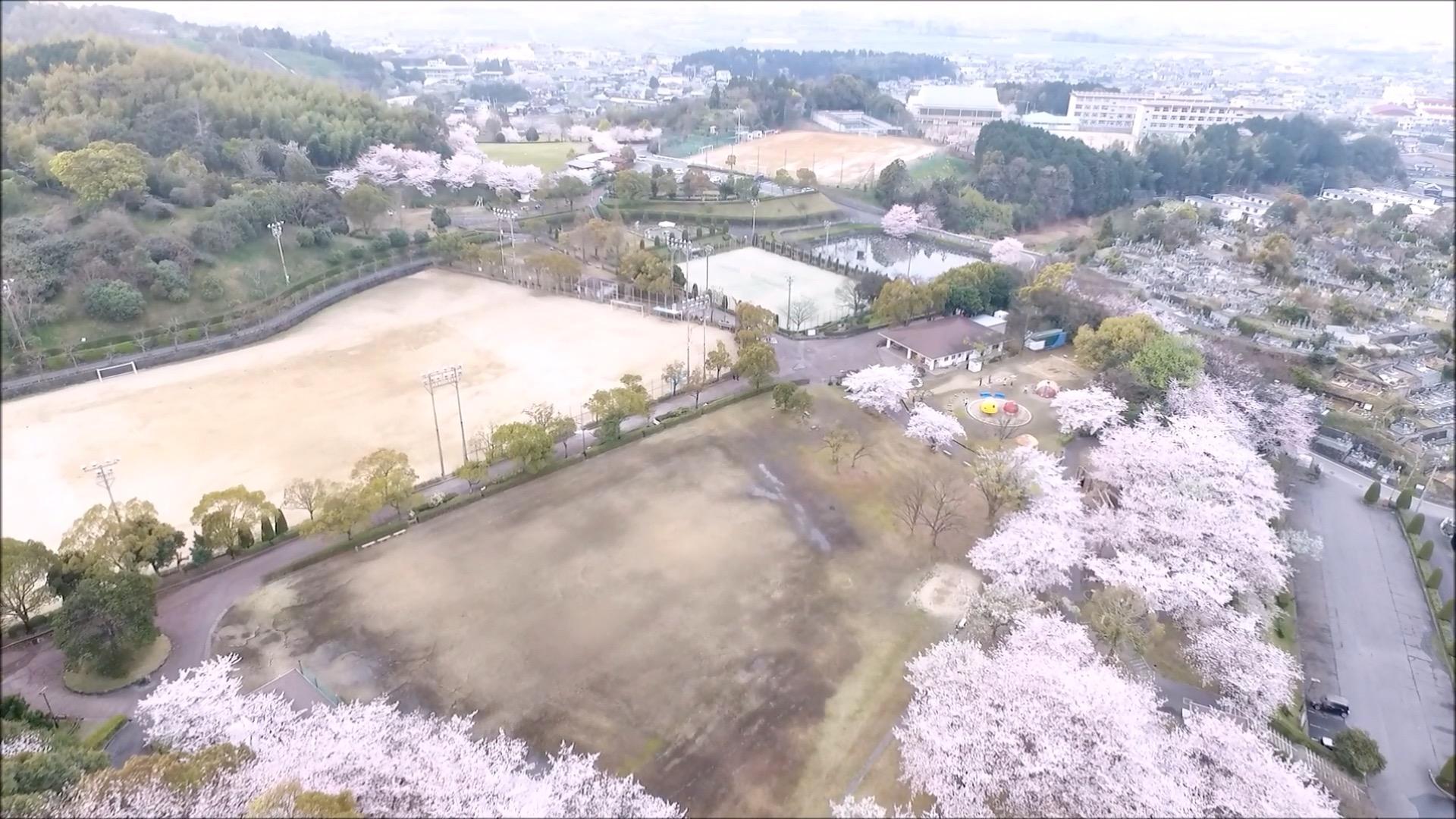 小松中央公園5